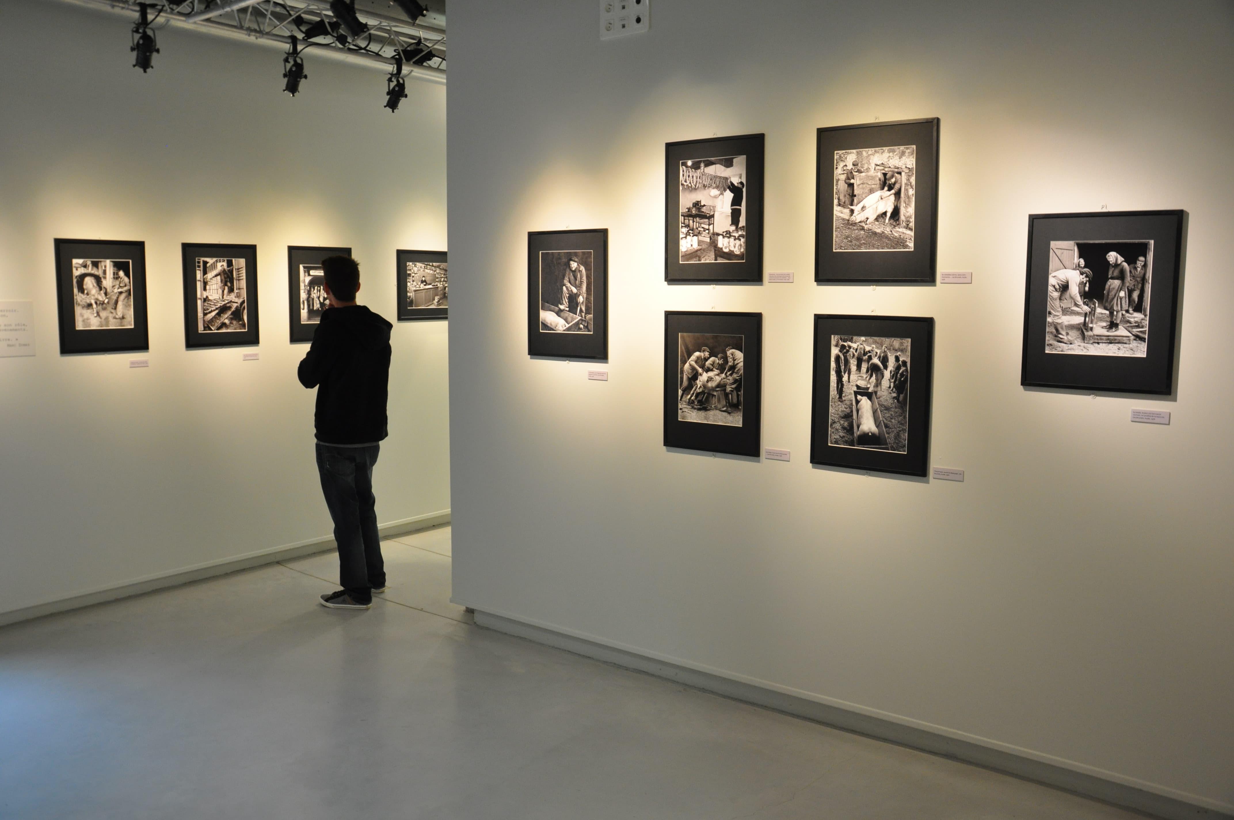 essarts espace arts et cultures bram exposition expo