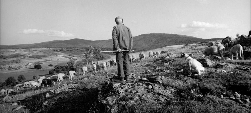 """Exposition : Raymond Depardon - """"La Terre des Paysans"""""""